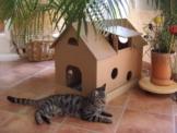 Katzenhaus aus Wellpappe mit Mäusehäuschen - Katzenkorb, Katzenhöhle -