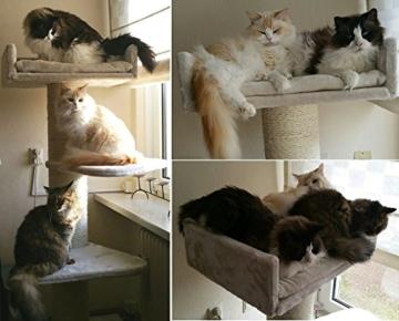 Kratzbaum große Katze XXL Royalty Creme Weiß. Super Amazon Promo. Sisalstämme 20cmØ Katzenkratzbaum für große und schwere Katzen. Von RHRQuality -