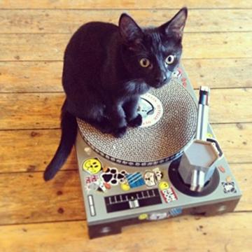SUCK UK Katzenkratz-Plattenspieler -