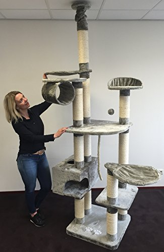 Kratzbaum Catdream Extreme Grau. Normal €299 ! Super Amazon Promo. Sisalstämme 12cm Ø Speziell für große und schwere Katzen. kratzbaum deckenhoch. Europäischer Qualitätsproduktion von RHRQuality -