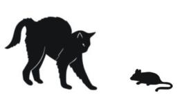 Katze Jagdtrieb